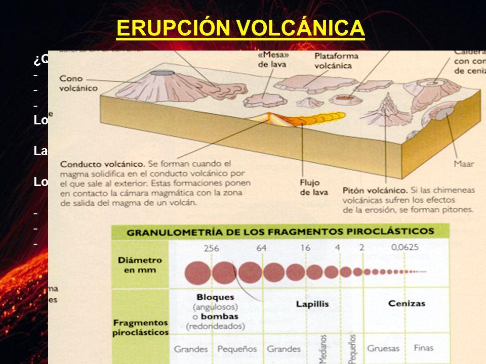 ERUPCIÓN VOLCÁNICA ¿Qué es lo que expulsa el volcán Gases. Lava.