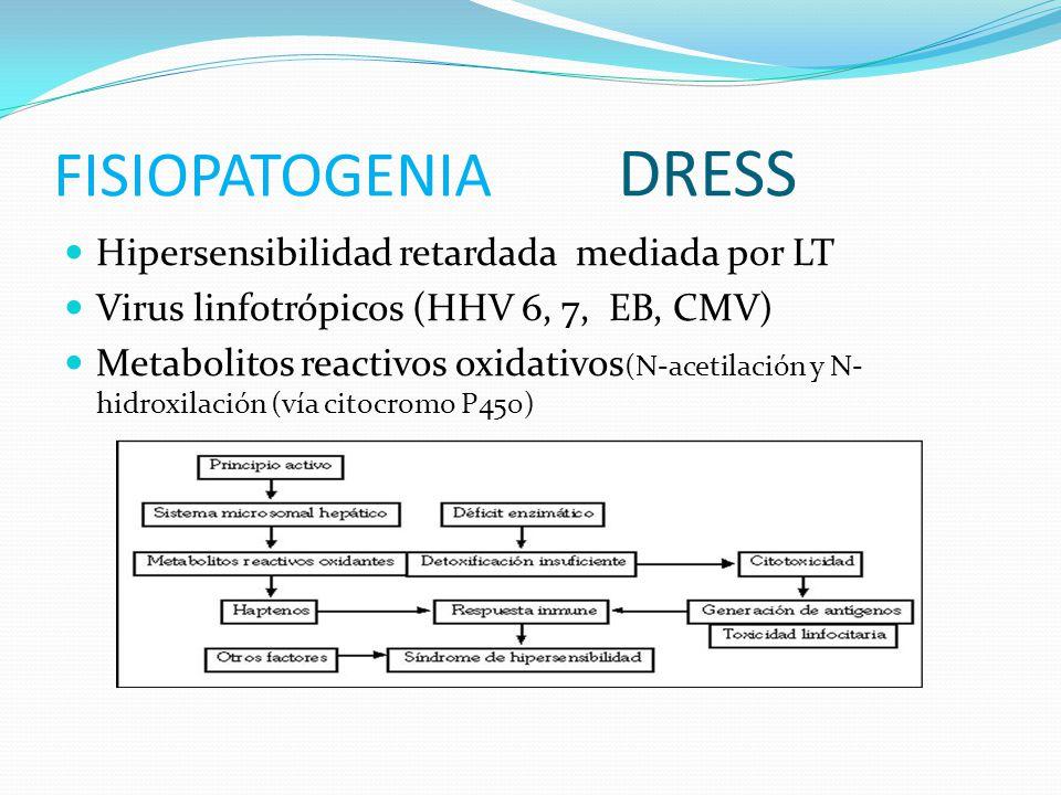 FISIOPATOGENIA DRESS Hipersensibilidad retardada mediada por LT