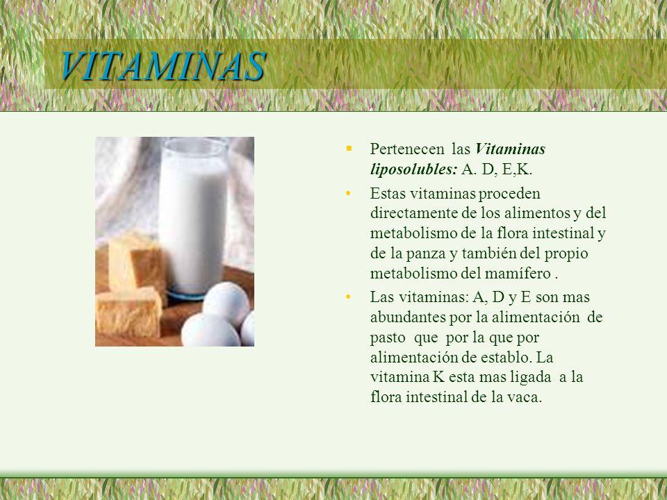 VITAMINAS Pertenecen las Vitaminas liposolubles: A. D, E,K.