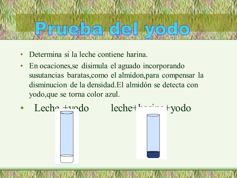 Prueba del yodo Leche +yodo leche+harina+yodo
