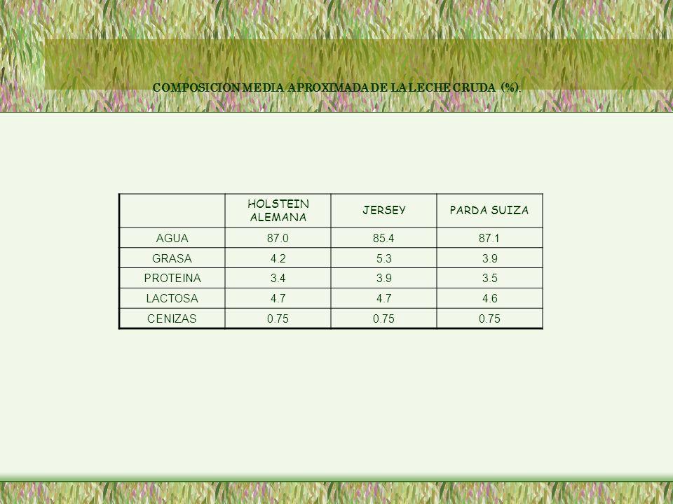 COMPOSICION MEDIA APROXIMADA DE LA LECHE CRUDA (%).