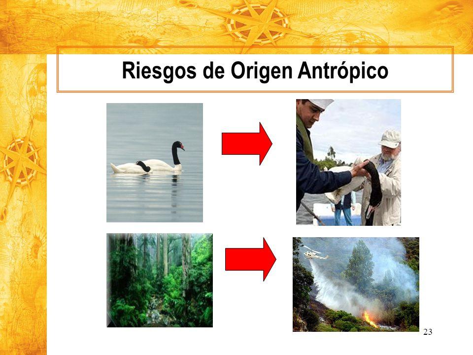 Riesgos de Origen Antrópico