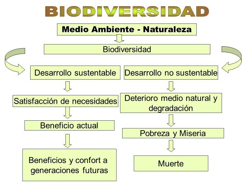 BIODIVERSIDAD Medio Ambiente - Naturaleza Biodiversidad
