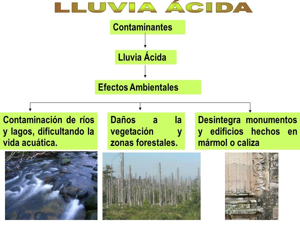 LLUVIA ÁCIDA Contaminantes Lluvia Ácida Efectos Ambientales