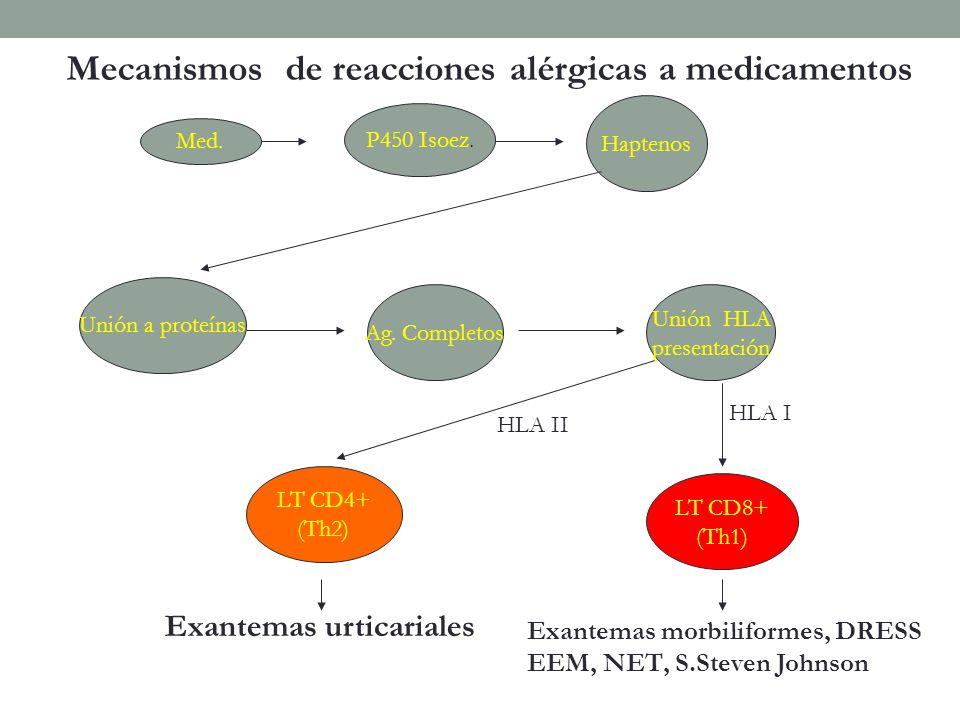 Mecanismos de reacciones alérgicas a medicamentos