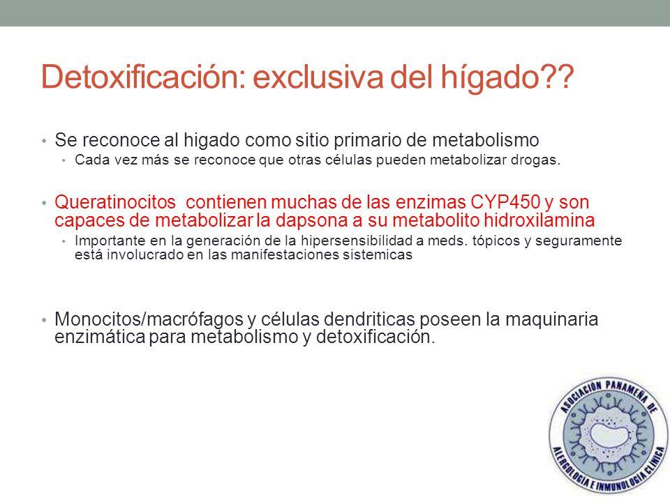 Detoxificación: exclusiva del hígado