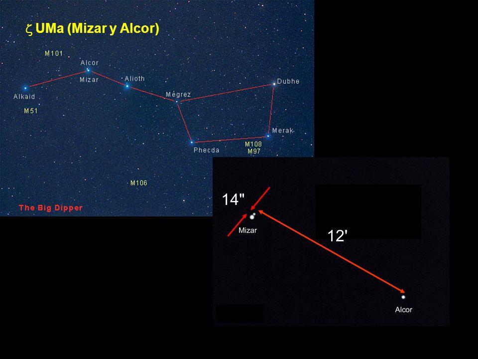 z UMa (Mizar y Alcor) Sistema cuádruple 14 12