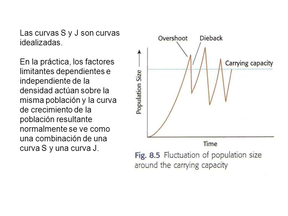 Las curvas S y J son curvas idealizadas.
