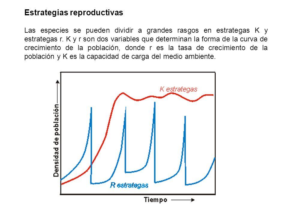 Estrategias reproductivas