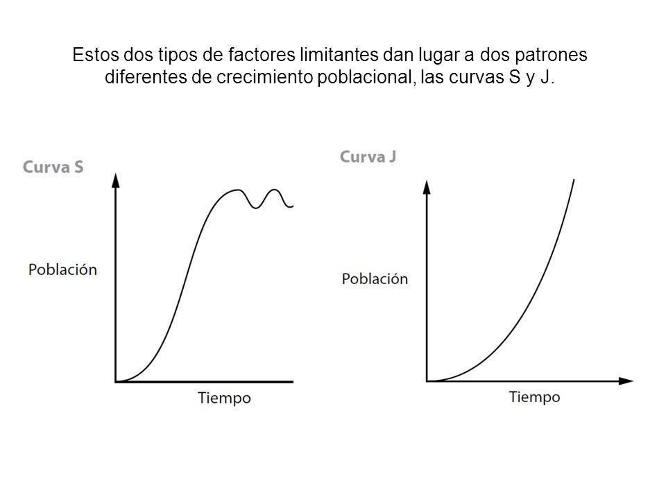 Estos dos tipos de factores limitantes dan lugar a dos patrones diferentes de crecimiento poblacional, las curvas S y J.