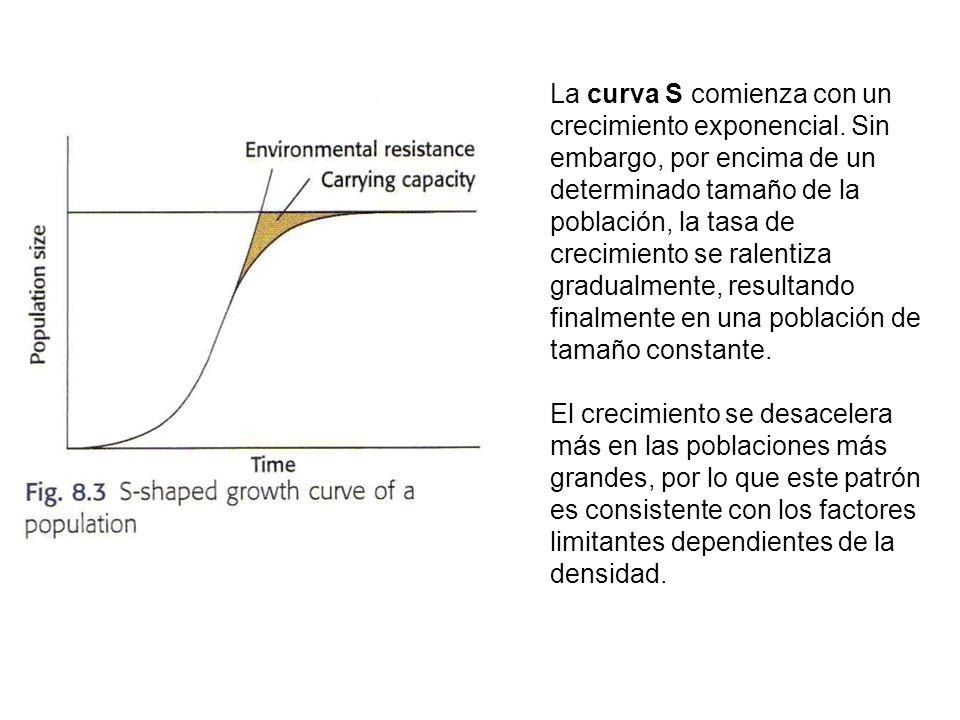 La curva S comienza con un crecimiento exponencial