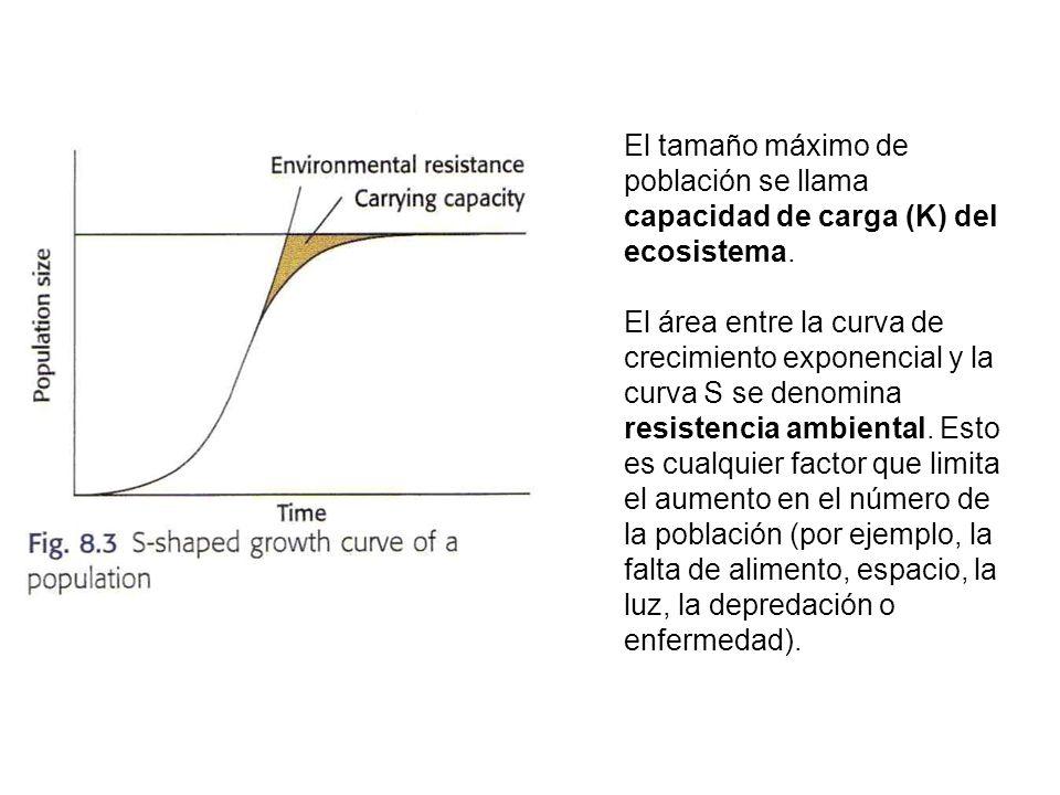 El tamaño máximo de población se llama capacidad de carga (K) del ecosistema.