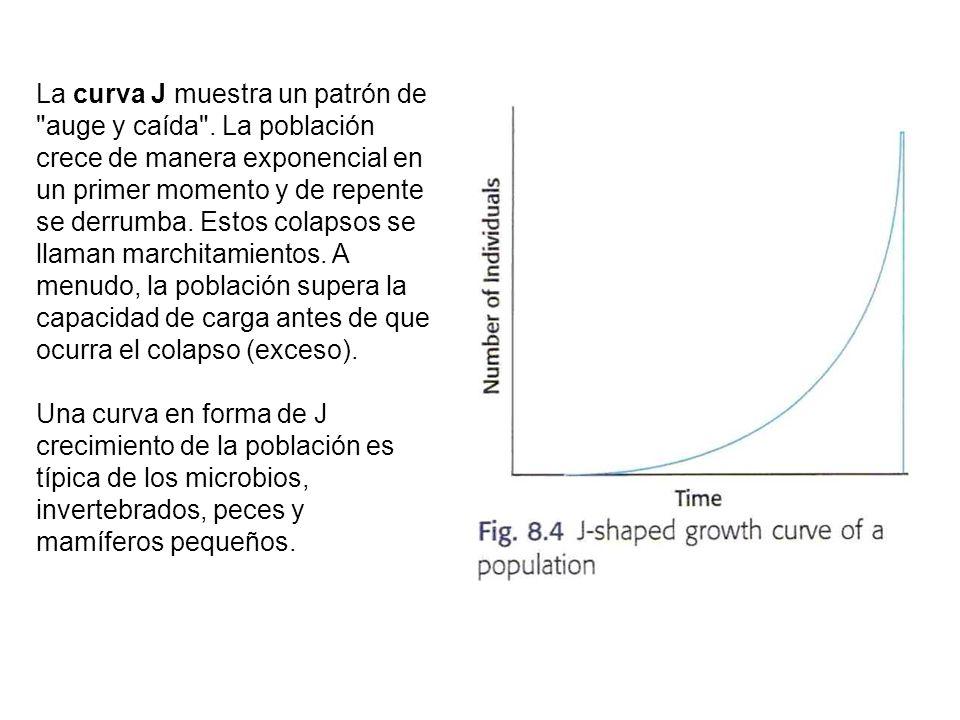 La curva J muestra un patrón de auge y caída