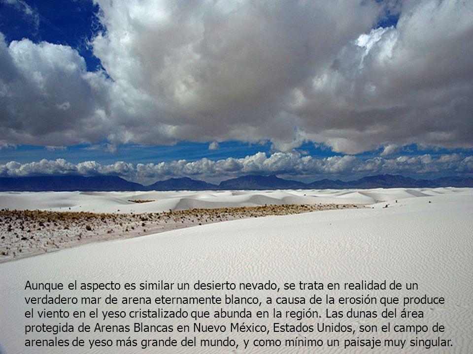 Aunque el aspecto es similar un desierto nevado, se trata en realidad de un verdadero mar de arena eternamente blanco, a causa de la erosión que produce el viento en el yeso cristalizado que abunda en la región.