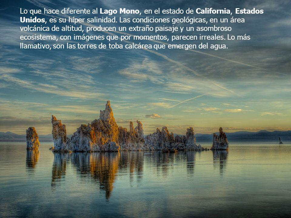 Lo que hace diferente al Lago Mono, en el estado de California, Estados Unidos, es su híper salinidad.