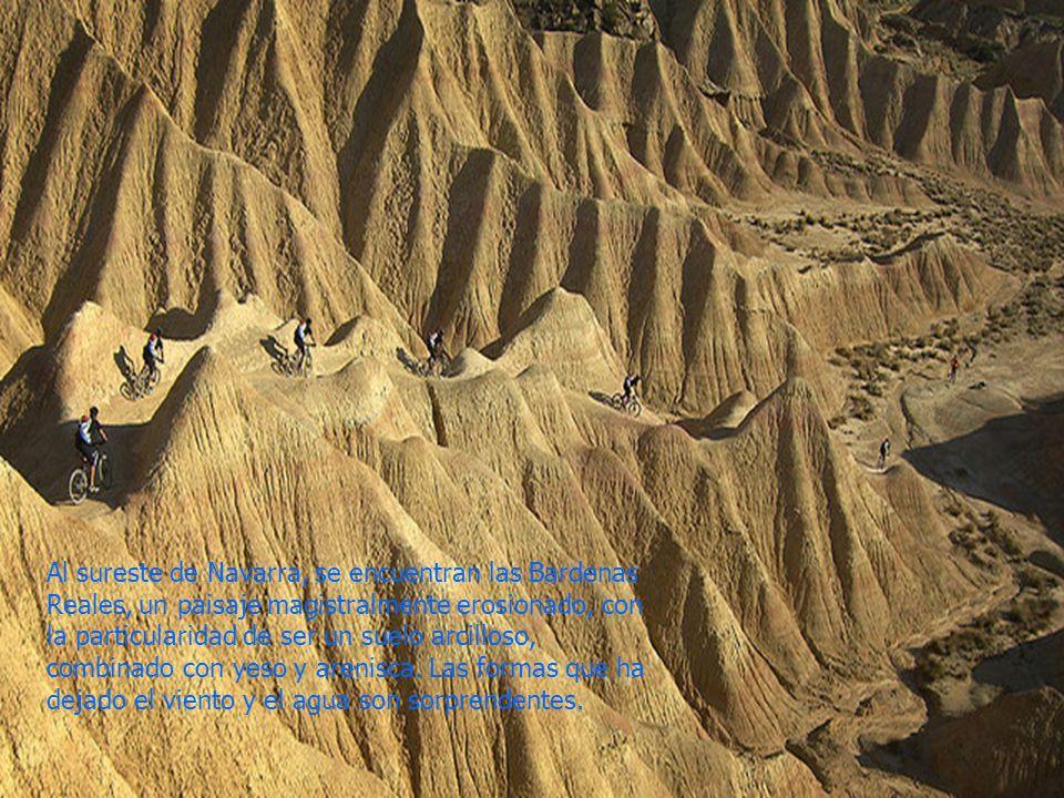 Al sureste de Navarra, se encuentran las Bardenas Reales, un paisaje magistralmente erosionado, con la particularidad de ser un suelo arcilloso, combinado con yeso y arenisca.
