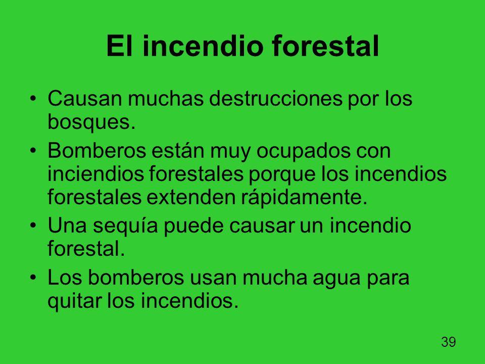 El incendio forestal Causan muchas destrucciones por los bosques.