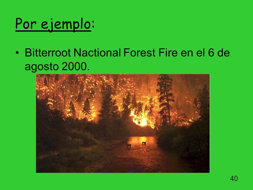 Por ejemplo: Bitterroot Nactional Forest Fire en el 6 de agosto 2000.