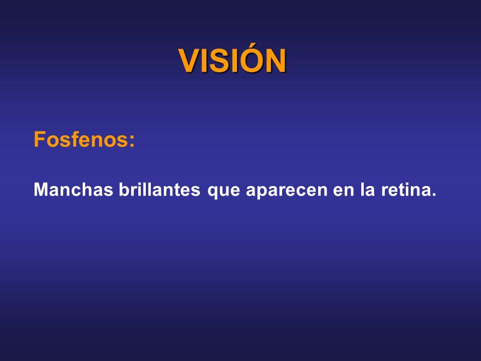 VISIÓN Fosfenos: Manchas brillantes que aparecen en la retina.