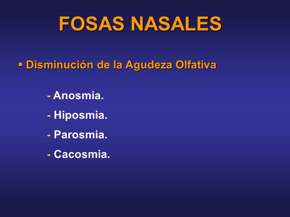 FOSAS NASALES Disminución de la Agudeza Olfativa - Anosmia.