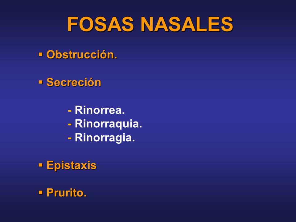 FOSAS NASALES Obstrucción. Secreción - Rinorrea. - Rinorraquia.