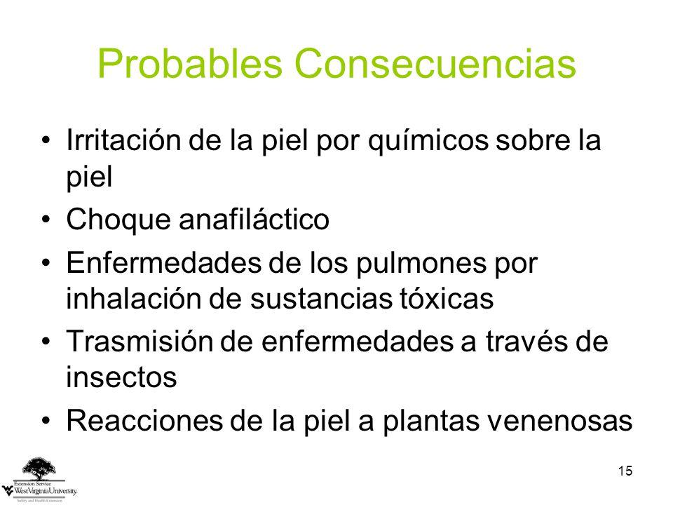 Probables Consecuencias