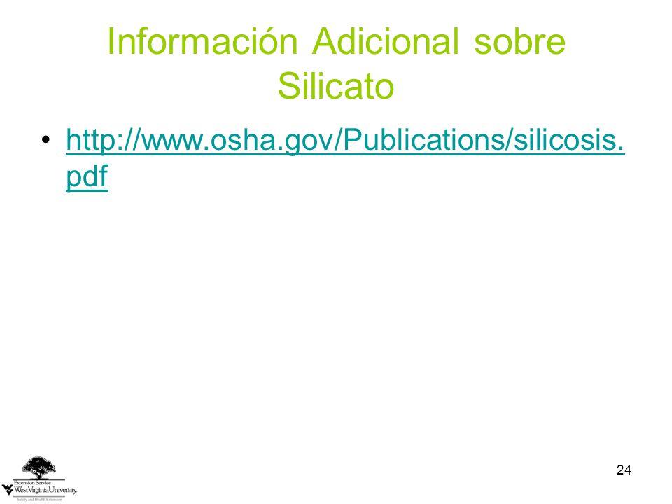 Información Adicional sobre Silicato