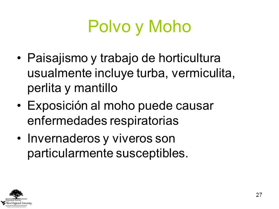 Polvo y Moho Paisajismo y trabajo de horticultura usualmente incluye turba, vermiculita, perlita y mantillo.