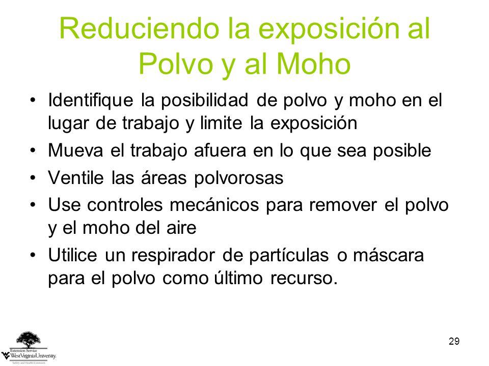 Reduciendo la exposición al Polvo y al Moho