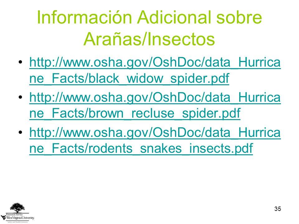 Información Adicional sobre Arañas/Insectos
