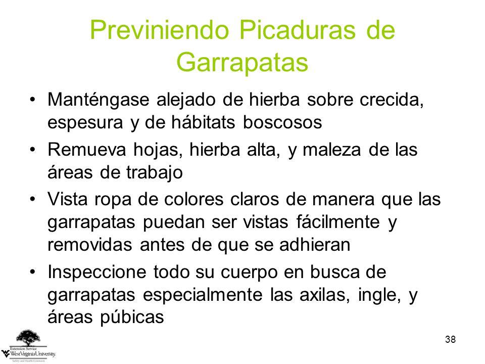 Previniendo Picaduras de Garrapatas