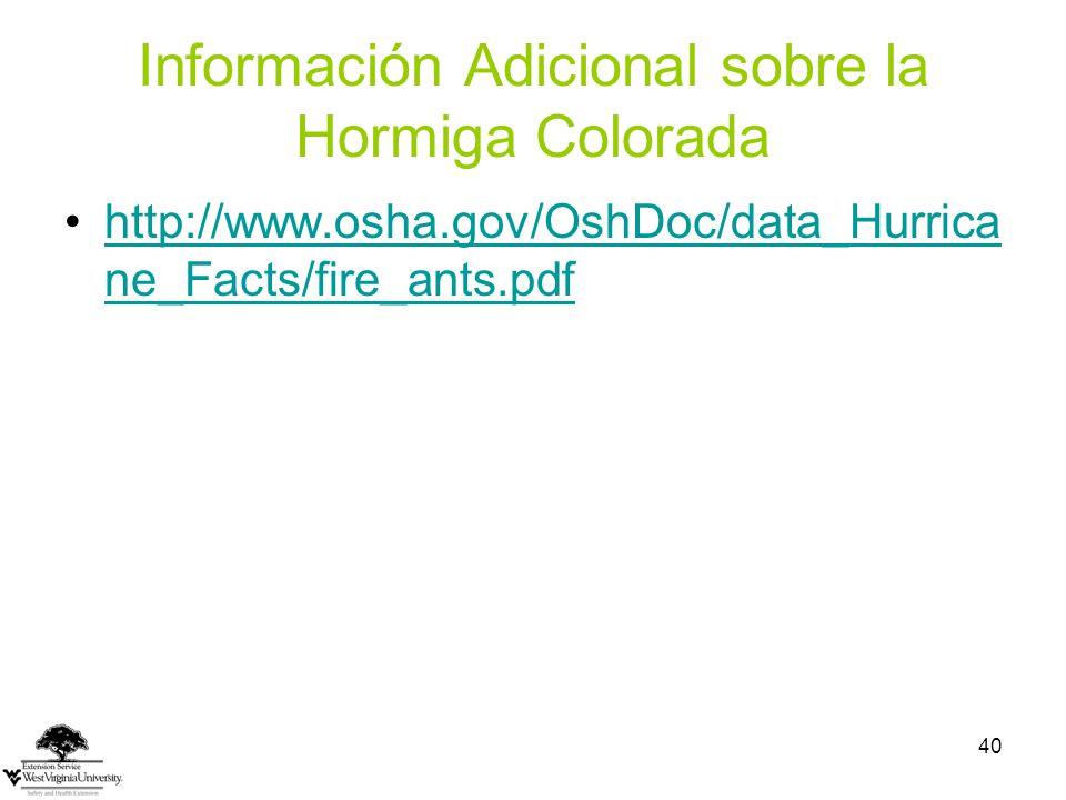 Información Adicional sobre la Hormiga Colorada