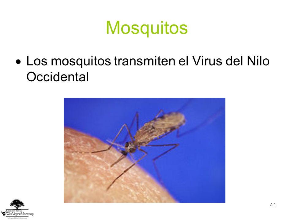 Mosquitos Los mosquitos transmiten el Virus del Nilo Occidental