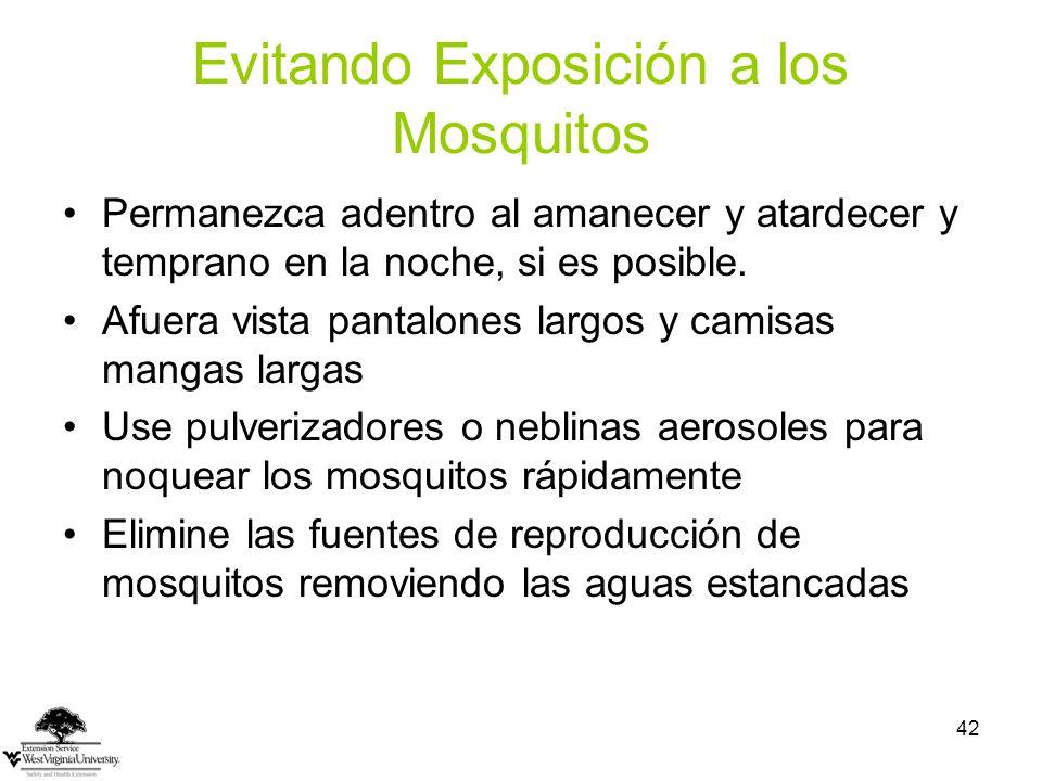 Evitando Exposición a los Mosquitos