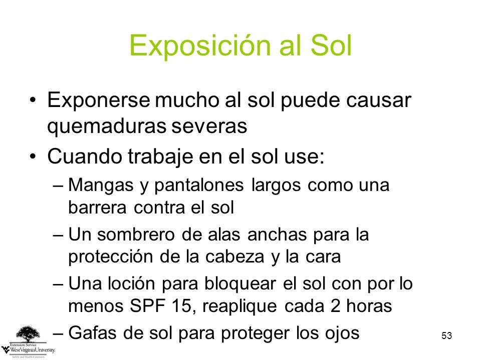 Exposición al Sol Exponerse mucho al sol puede causar quemaduras severas. Cuando trabaje en el sol use: