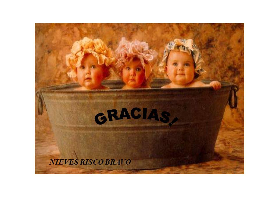 GRACIAS! NIEVES RISCO BRAVO