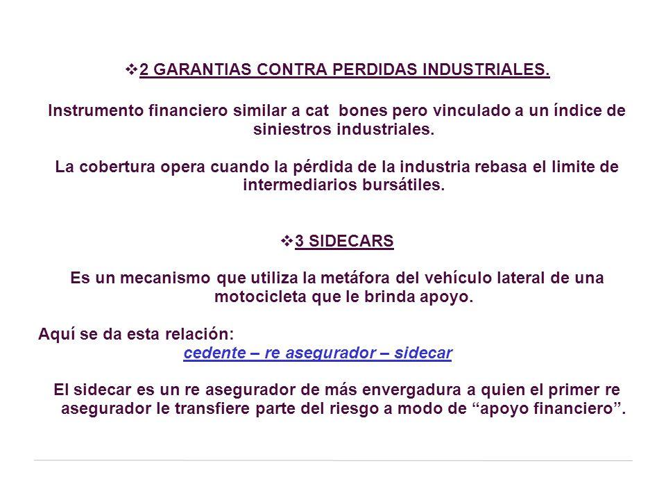 2 GARANTIAS CONTRA PERDIDAS INDUSTRIALES.