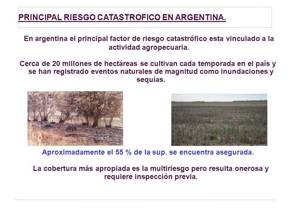 PRINCIPAL RIESGO CATASTROFICO EN ARGENTINA.