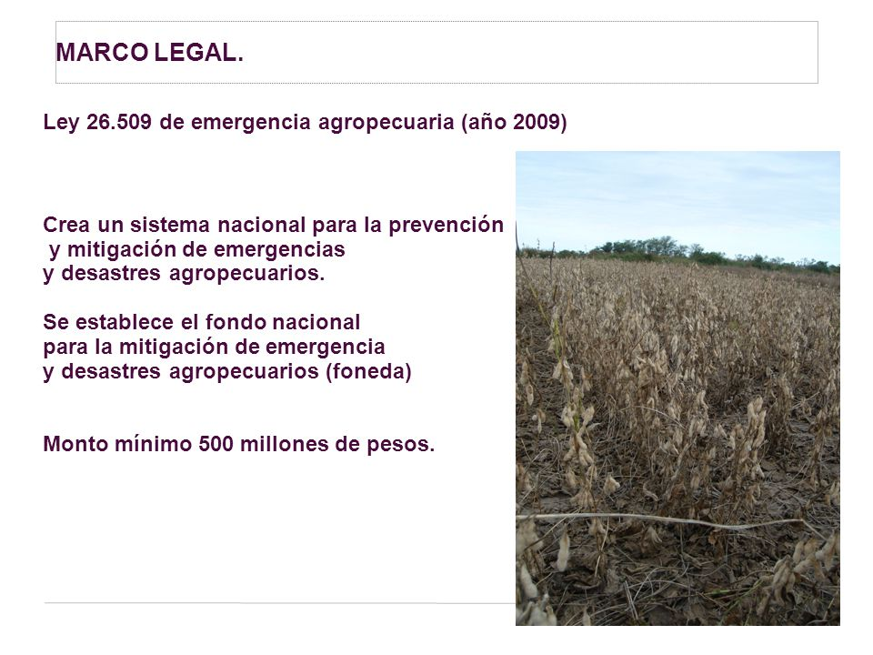 MARCO LEGAL. Ley 26.509 de emergencia agropecuaria (año 2009)