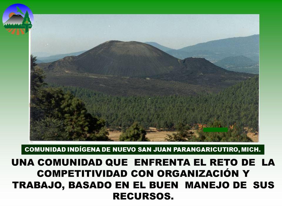 COMUNIDAD INDÍGENA DE NUEVO SAN JUAN PARANGARICUTIRO, MICH.