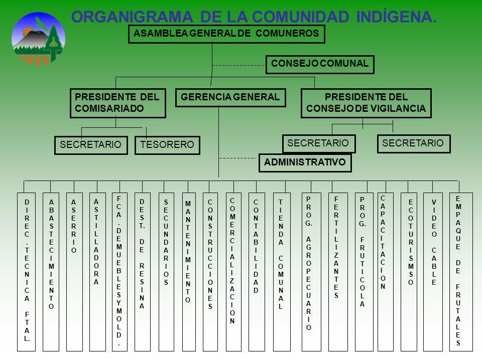 ORGANIGRAMA DE LA COMUNIDAD INDÍGENA. ASAMBLEA GENERAL DE COMUNEROS