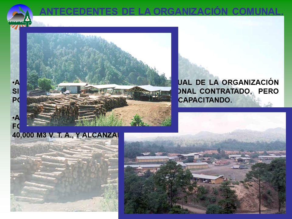 ANTECEDENTES DE LA ORGANIZACIÓN COMUNAL.