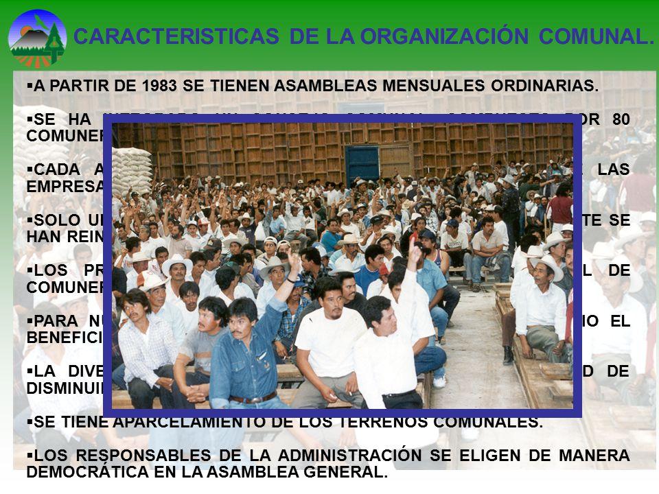 CARACTERISTICAS DE LA ORGANIZACIÓN COMUNAL.