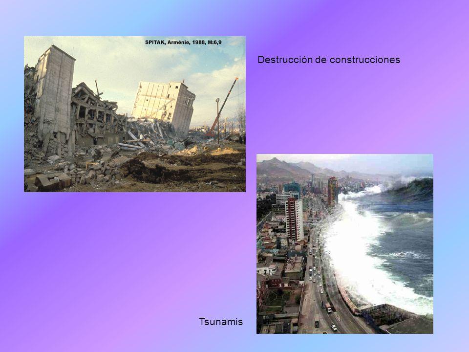Destrucción de construcciones