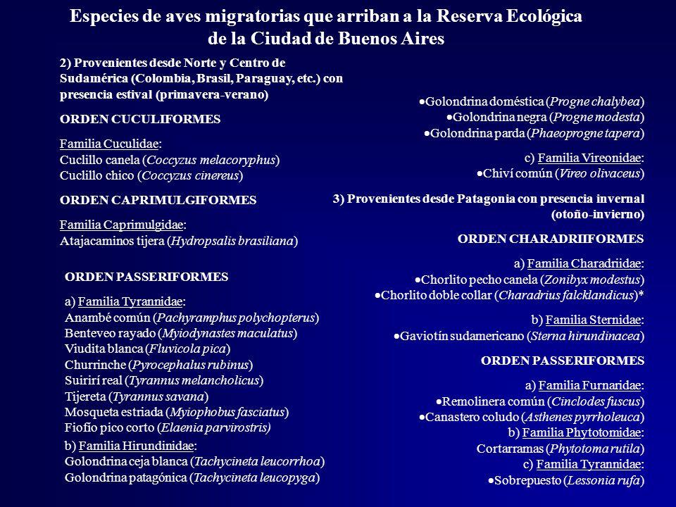 Especies de aves migratorias que arriban a la Reserva Ecológica de la Ciudad de Buenos Aires