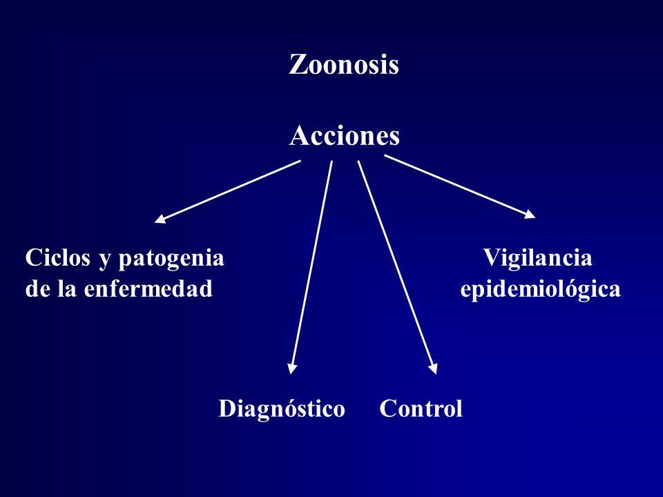 Zoonosis Acciones Ciclos y patogenia Vigilancia