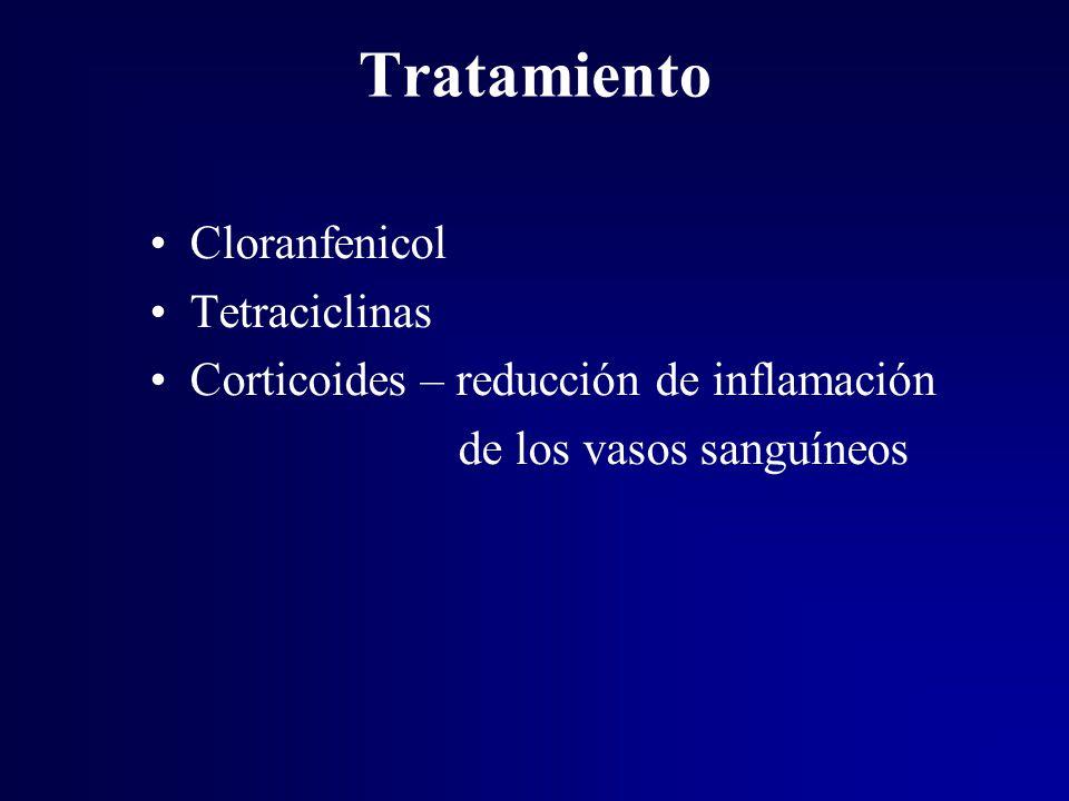 Tratamiento Cloranfenicol Tetraciclinas