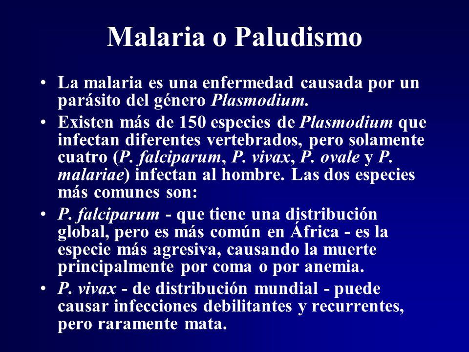 Malaria o Paludismo La malaria es una enfermedad causada por un parásito del género Plasmodium.