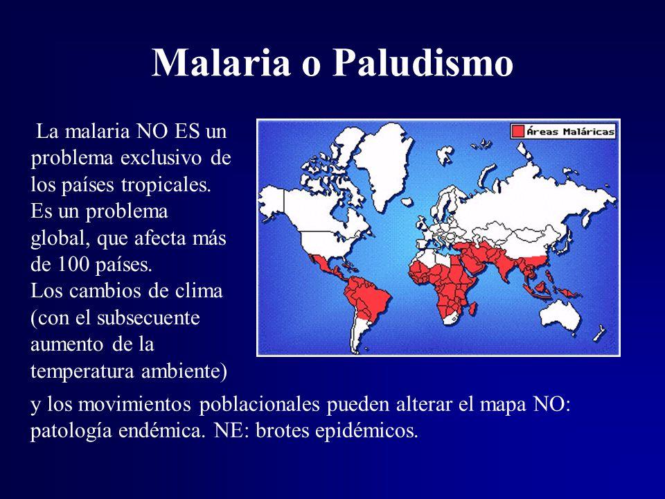 La malaria NO ES un problema exclusivo de