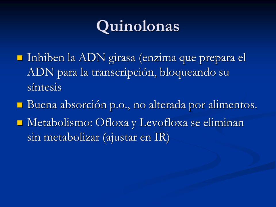 Quinolonas Inhiben la ADN girasa (enzima que prepara el ADN para la transcripción, bloqueando su síntesis.
